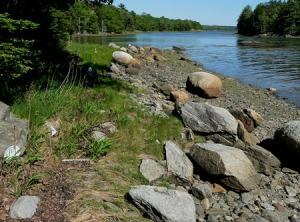 High-tide line, Butler Point.