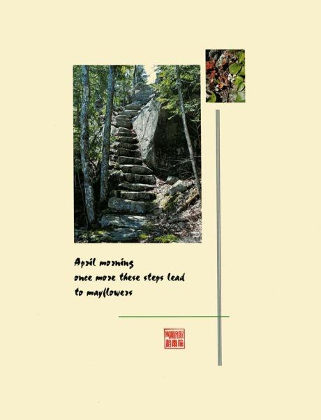 mayflower-steps_72dpi
